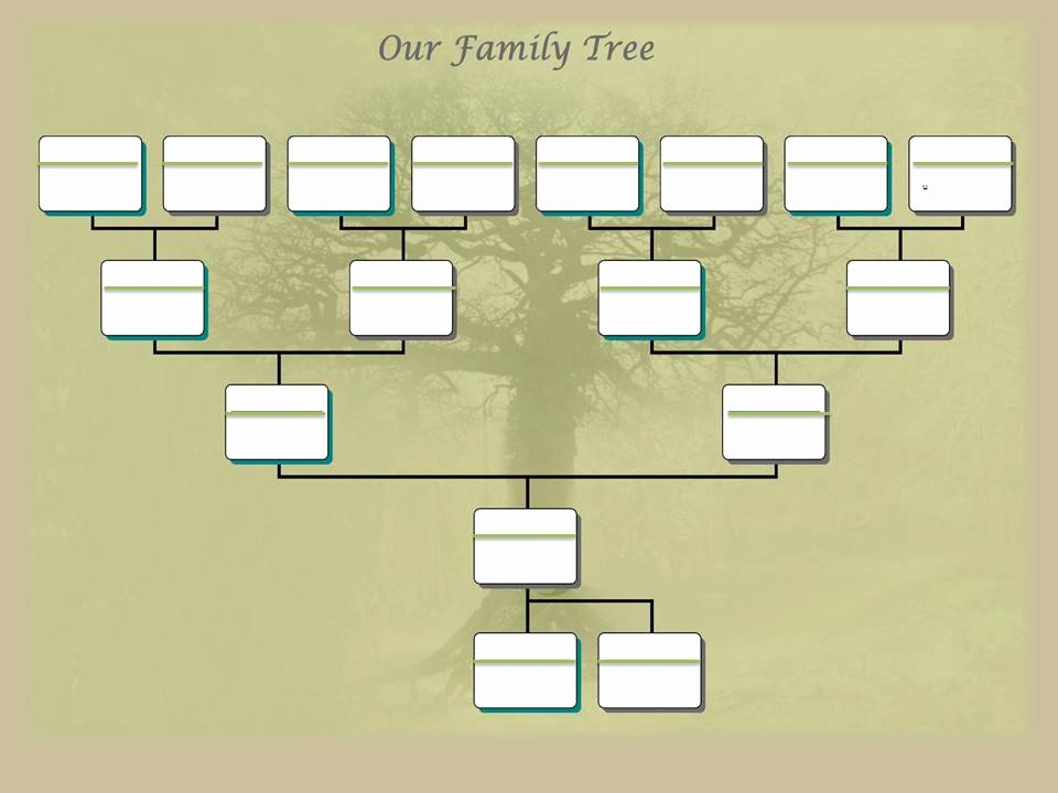 Building A Family Tree Template Best Of Family Tree Project Template – Ancestry Talks with Paul Crooks
