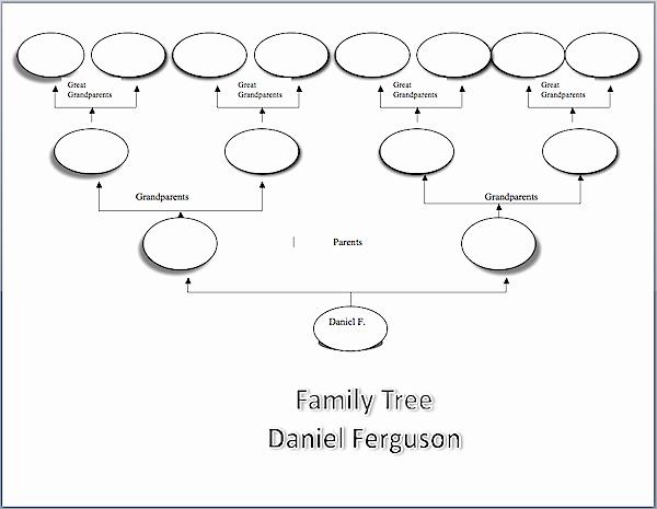 Building A Family Tree Template New Family Tree Sample Visio Chart Family History
