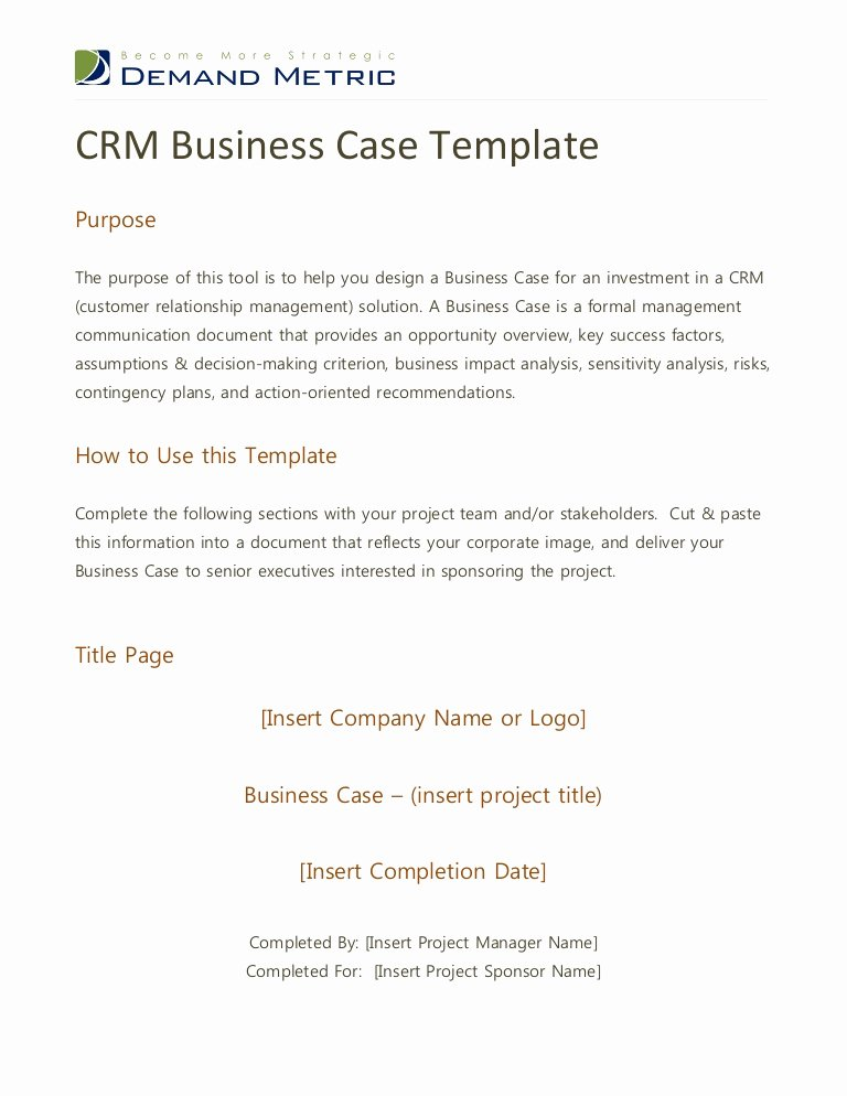 Business Case for Promotion Template Beautiful Crm Business Case Template