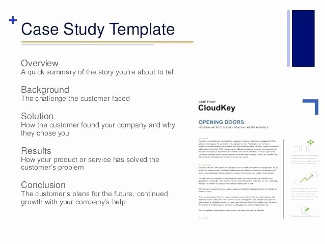 Business Case Study Examples Luxury Business Case Study format Sample Business Case Analysis