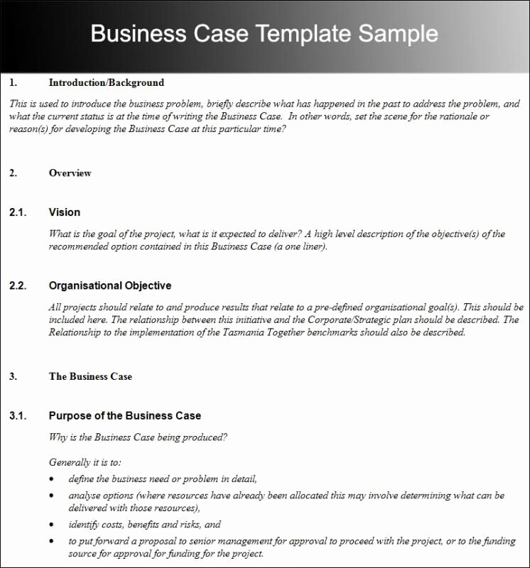 Business Case Study Examples Unique Business Case Template Template