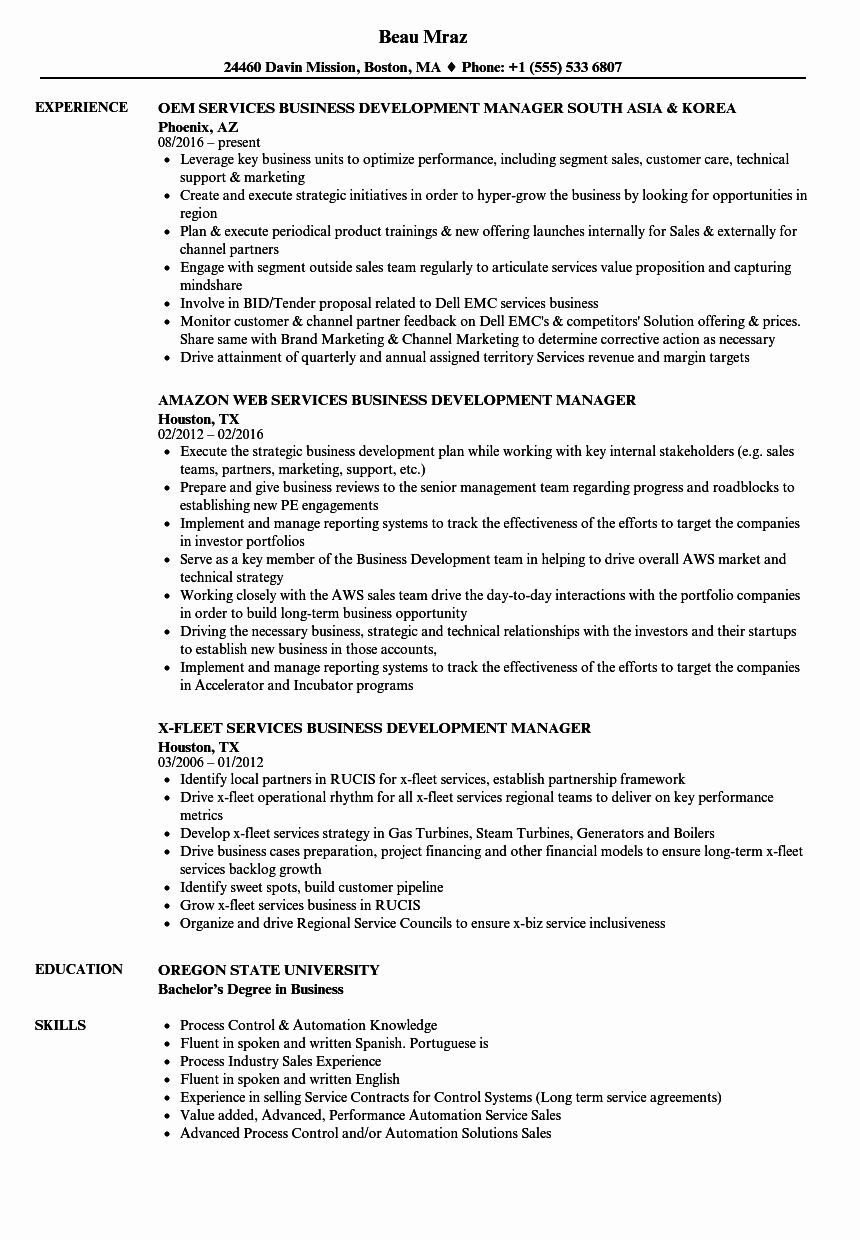 Business Development Manager Resume Best Of Services Business Development Manager Resume Samples