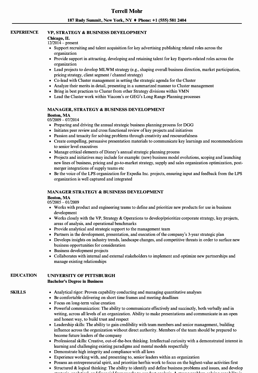 Business Development Manager Resume Elegant Strategy & Business Development Resume Samples