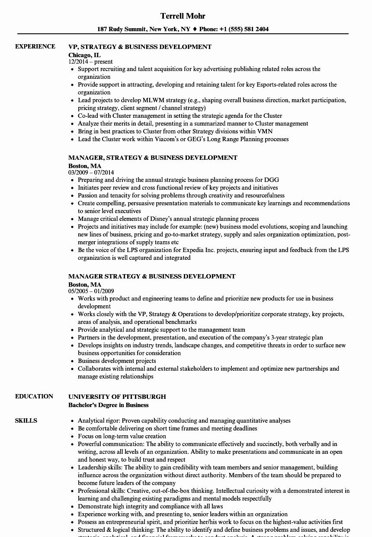Business Development Manager Resume Elegant Strategy & Business Development Resume Samples