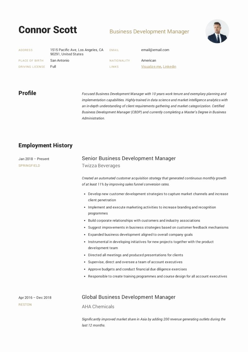 Business Development Manager Resume Inspirational Business Development Manager Resume & Guide