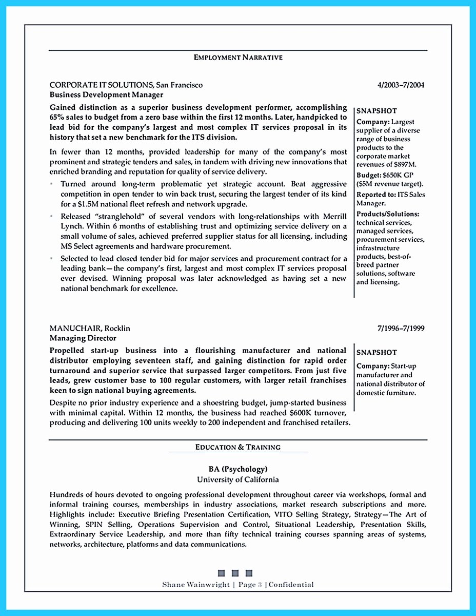 Business Development Manager Resume Unique Marvelous Things to Write Best Business Development