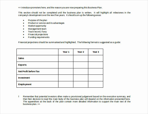 Business Development Plan Example Best Of Business Strategy Template – 14 Word Pdf Ppt Documents