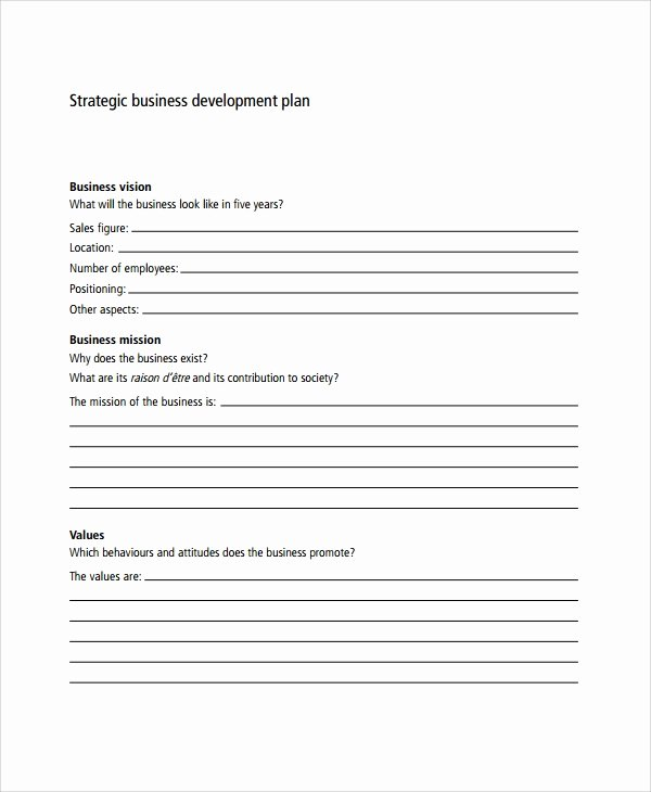 Business Development Plan Example Best Of Sample Business Development Plan Template 6 Free