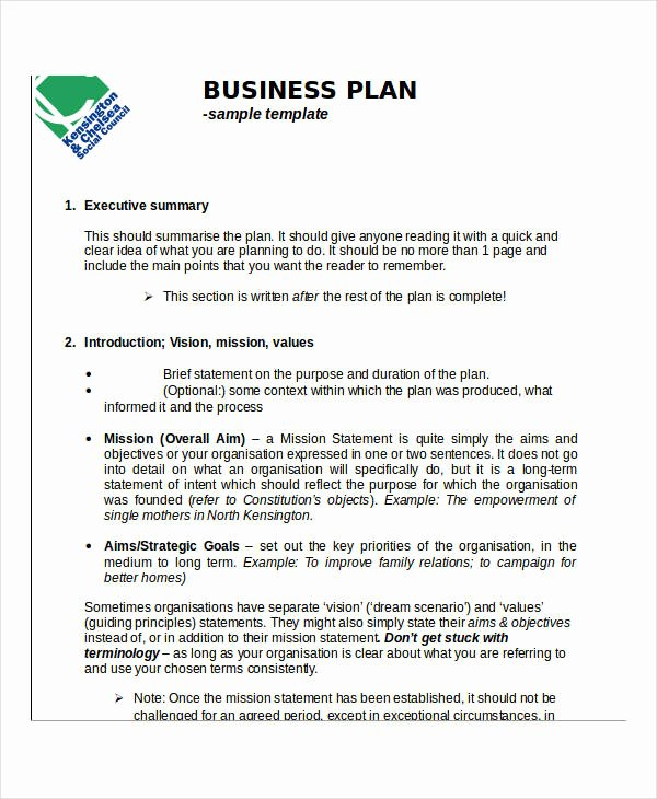 Business Development Plan Example Luxury Free 55 Action Plan Examples In Pdf Word