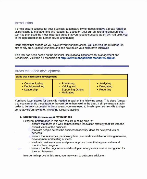 Business Development Plan Example Unique Sample Business Development Plan Template 6 Free