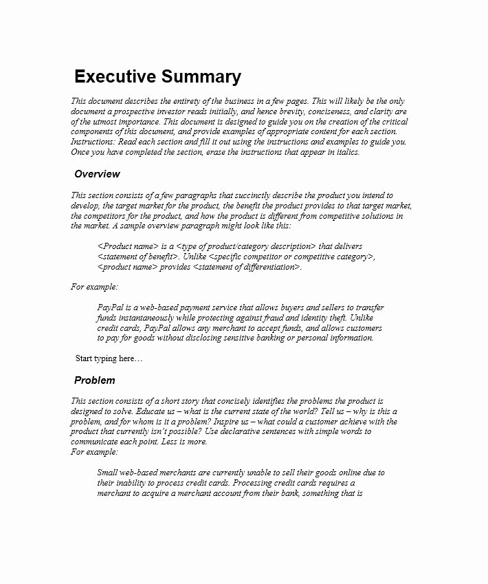 Business Executive Summary Example Inspirational 9 Executive Summary Marketing Plan Examples Pdf Word