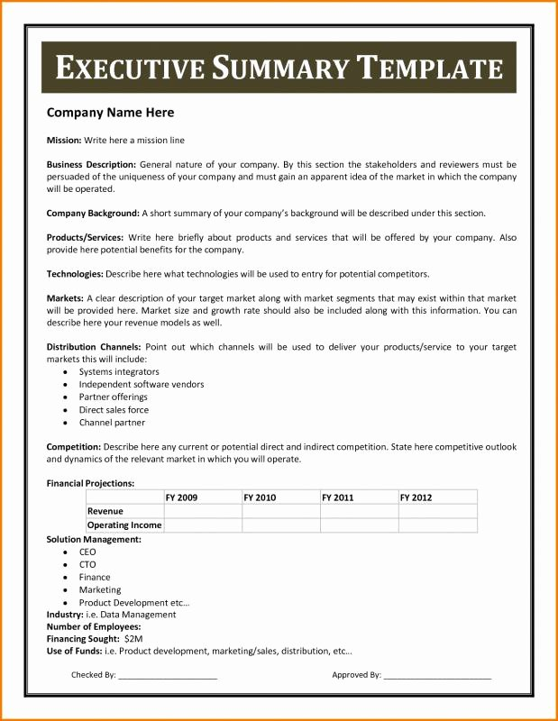 Business Executive Summary Example Luxury Example An Executive Summary