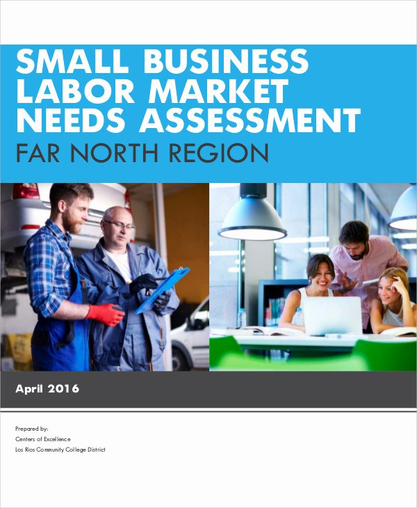 Business Needs assessment Template Awesome 32 Free Needs assessment Templates