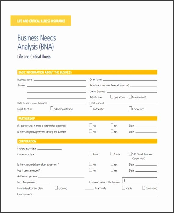 Business Needs assessment Template Best Of 7 Business Needs assessment Template Sampletemplatess