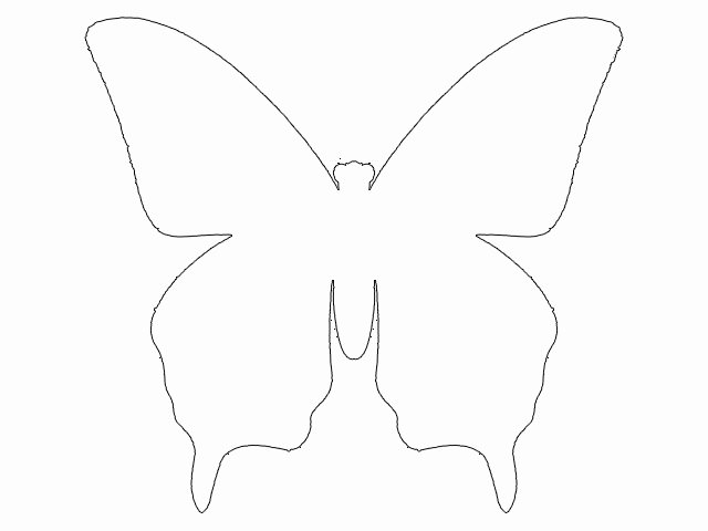 Butterfly Cut Out Template Unique Best S Of butterfly Cut Out Pattern butterflies Cut