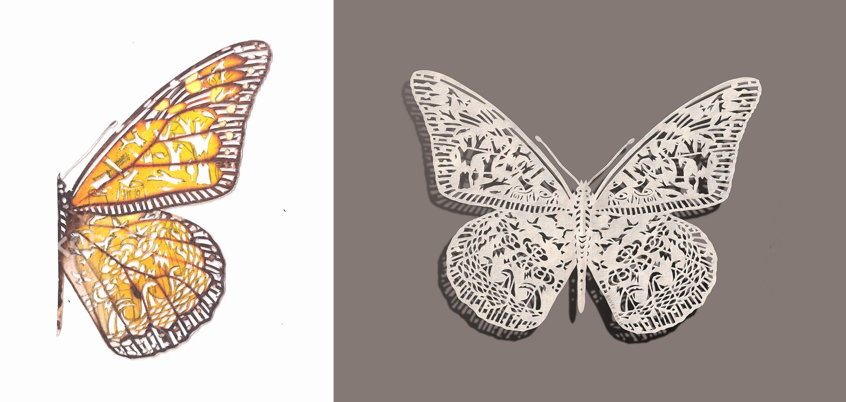 Butterfly Paper Cut Out Inspirational butterfly