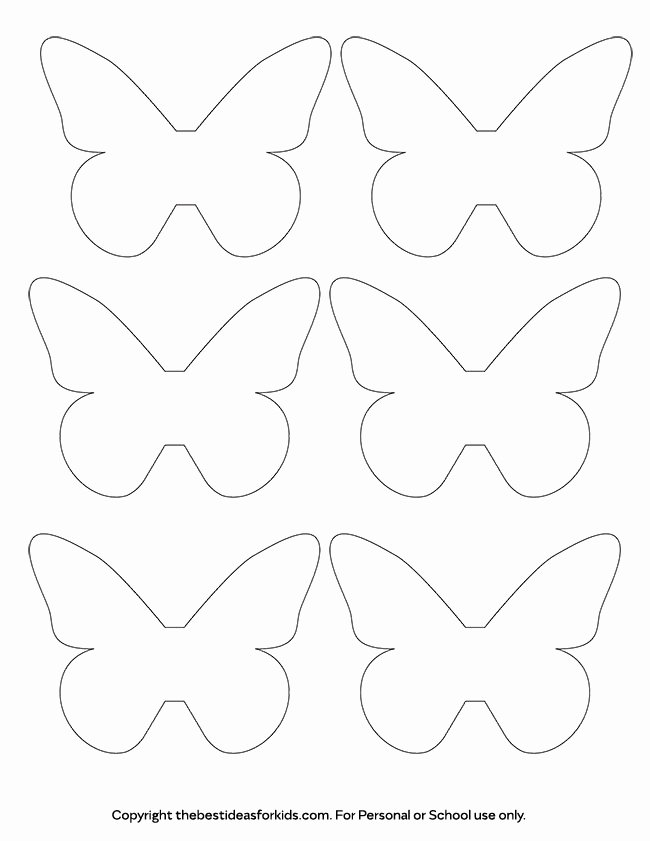 Butterfly Paper Cut Out Inspirational butterfly Template the Best Ideas for Kids