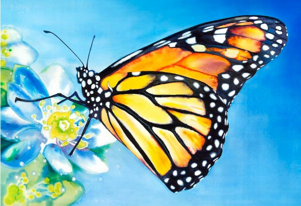 Butterfly Pictures to Paint Inspirational 10 Beautiful butterfly Painting Ideas