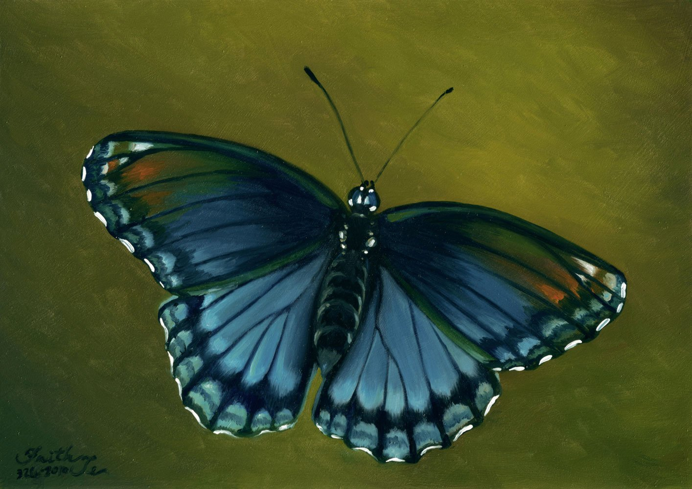 Butterfly Pictures to Paint Inspirational Daily Paintings by Faith Te Oil Paintings Page 4