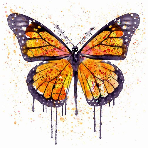 Butterfly Pictures to Paint Inspirational Monarch butterfly Watercolor Painting Wall Art Square Art