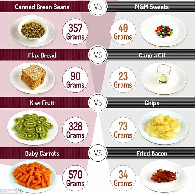 Calories In All Foods Chart Fresh Daily Calorie Intake Of Countries Across the World
