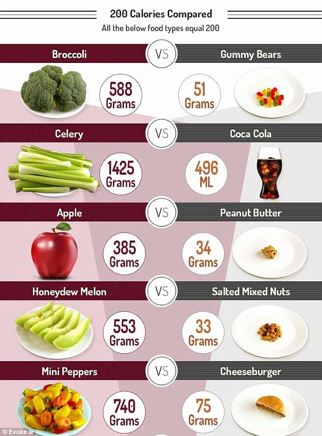 Calories In All Foods Chart Unique Americans Eat More Calories Per Day Than Anyone Else Graph
