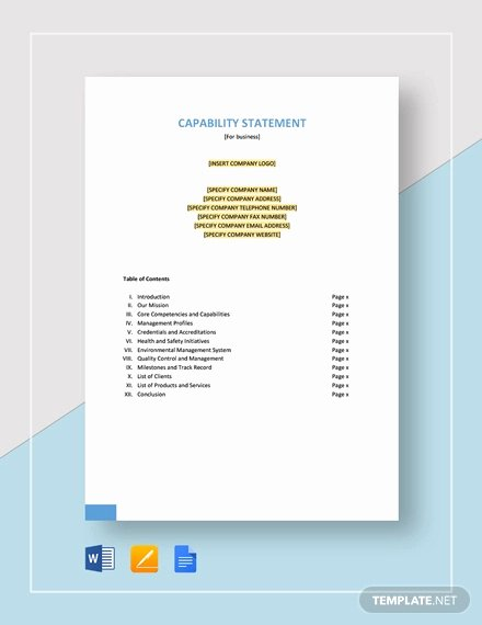 Capability Statement Template Word Awesome Free 13 Capability Statement Examples & Samples Doc