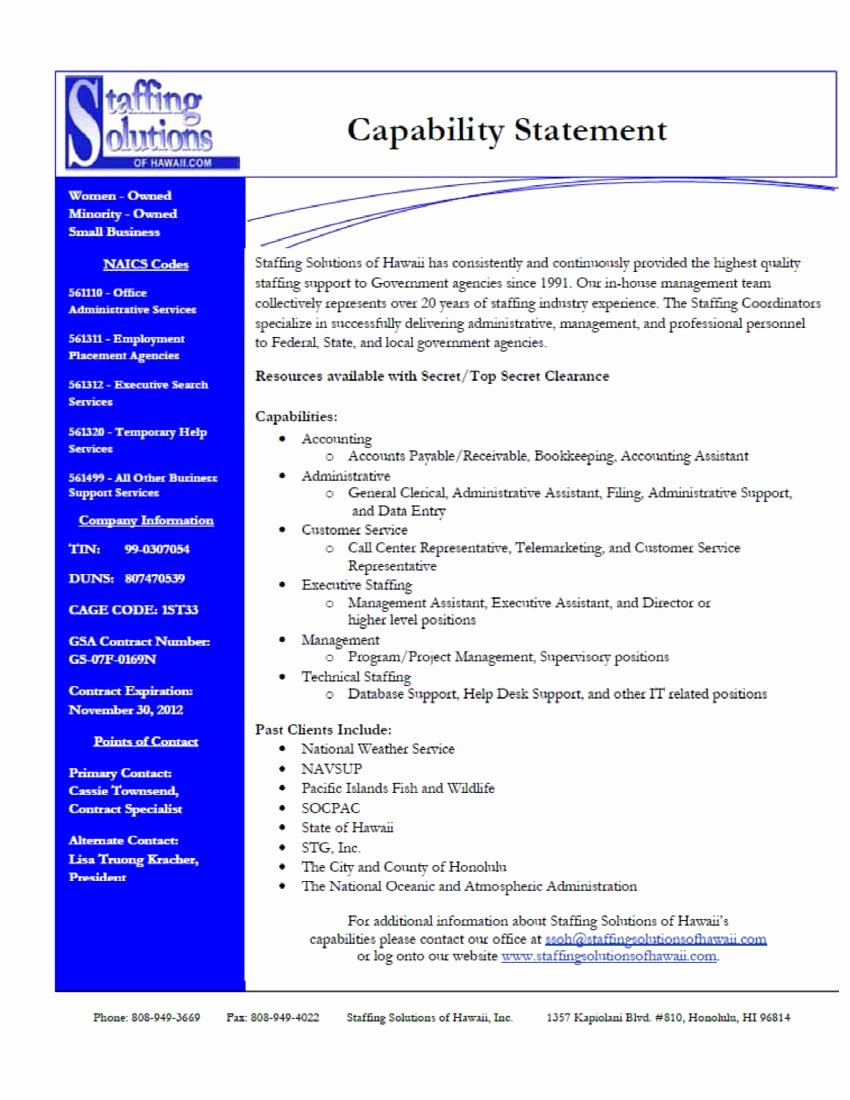 Capability Statement Template Word Beautiful Capability Statement Examples