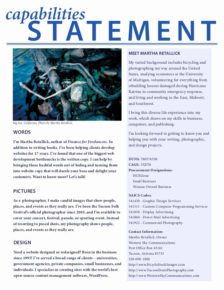 Capability Statement Template Word Best Of Capabilities Statement
