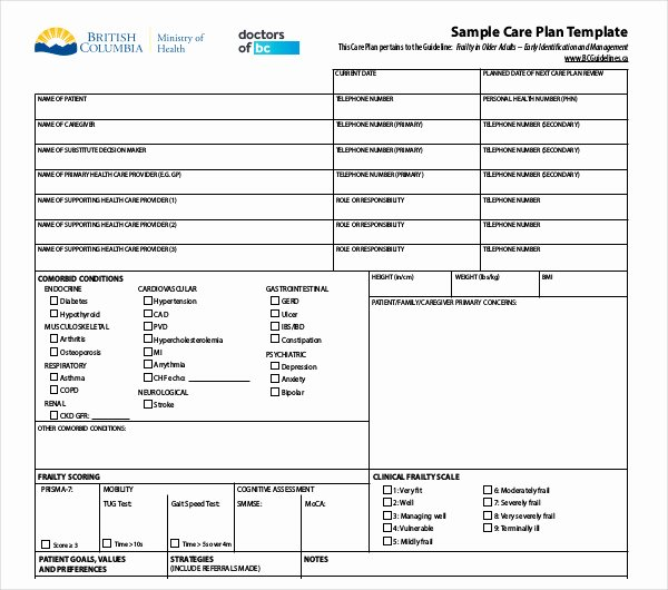 Care Plan Template Elegant 13 Patient Care Plan Templates Pdf Docs