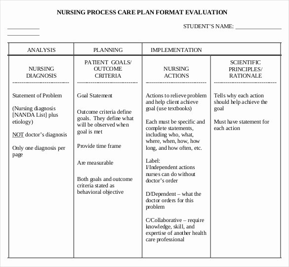 Care Plan Template Lovely Nursing Care Plan Template