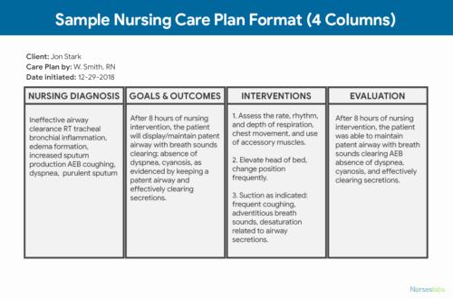 Care Plan Template Unique Nursing Care Plan Ncp Ultimate Guide and Database