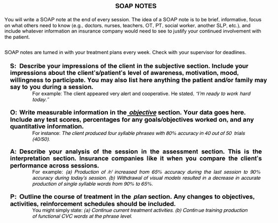 Case Note Example social Work Luxury Case Note Template for social Work soap Google Search