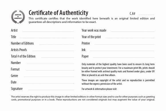 Certificate Of Authenticity form Elegant 37 Certificate Of Authenticity Templates Art Car