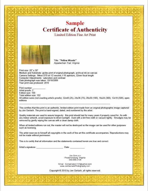 Certificate Of Authenticity Wording Luxury 37 Certificate Of Authenticity Templates Art Car
