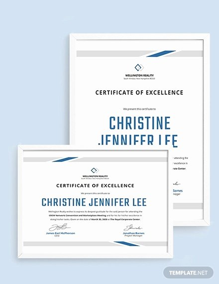 Certificate Of Excellence Template Word Beautiful Excellence Certificate Template 24 Word Pdf Psd