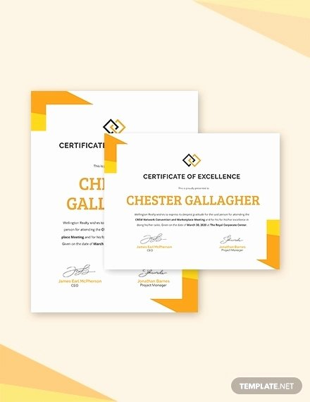 Certificate Of Excellence Template Word Lovely 26 Certification Templates Word Ai Psd Examples