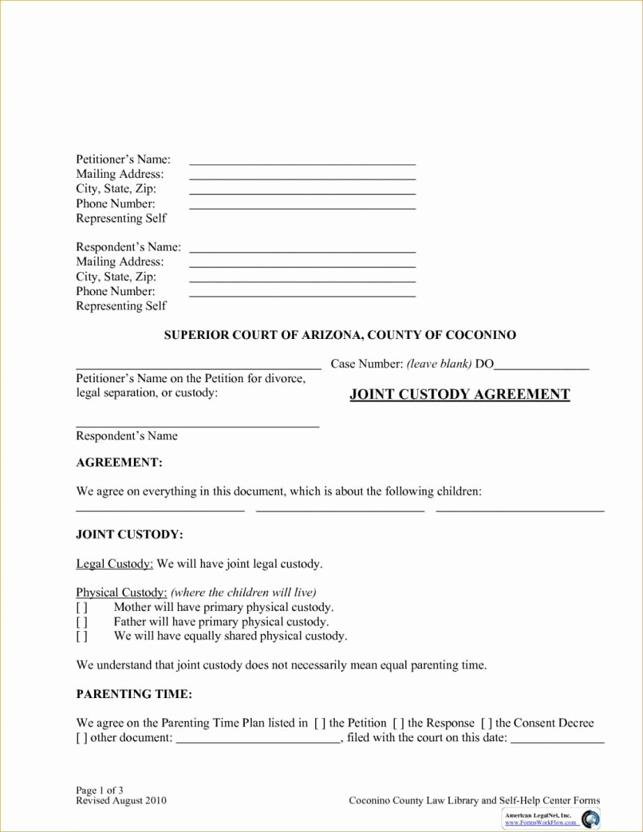 Child Custody Agreement Example Awesome Temporary Child Custody Agreement form Simple Joint