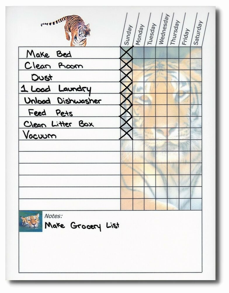 Chore List for Adults New Teen Adult Weekly Chore Chart Works as Dry Erase Board
