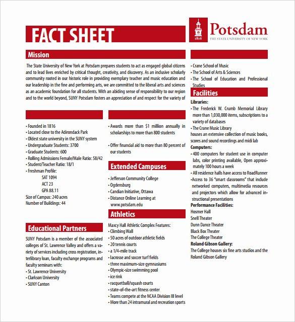 Company Fact Sheet Template Beautiful 27 Fact Sheet Templates Pdf Doc Apple Pages Google