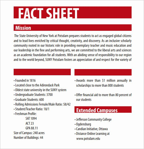 Company Fact Sheet Template Inspirational Fact Sheet Template – 12 Download Documents In Pdf Word