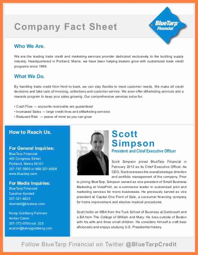 Company Fact Sheet Template Lovely 8 Pany Fact Sheet Template