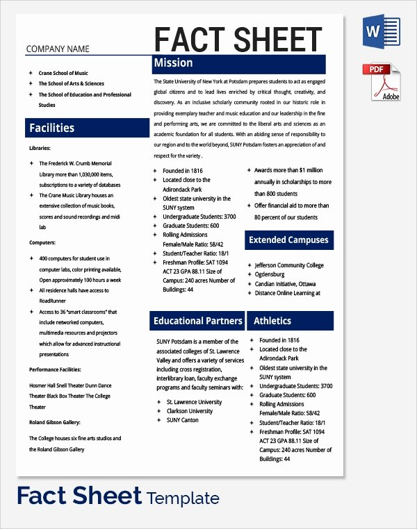 Company Fact Sheet Template New Sample Fact Sheet Template 21 Free Download Documents