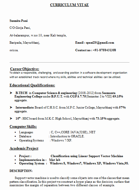Computer Science Resume format Awesome Puter Science Student Resume Sample