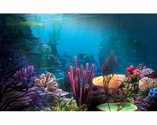 Cool Fish Tank Backgrounds Awesome 17 Best Ideas About Aquarium Backgrounds On Pinterest