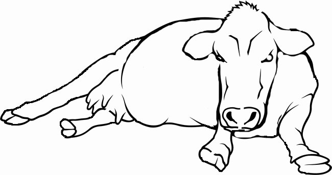 Cow Cut Out Template Awesome Cow Template Animal Templates