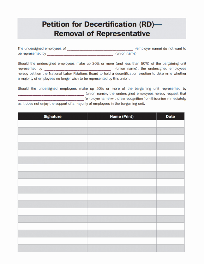 Create A Petition form Awesome 13 Printable Petition Template Examples