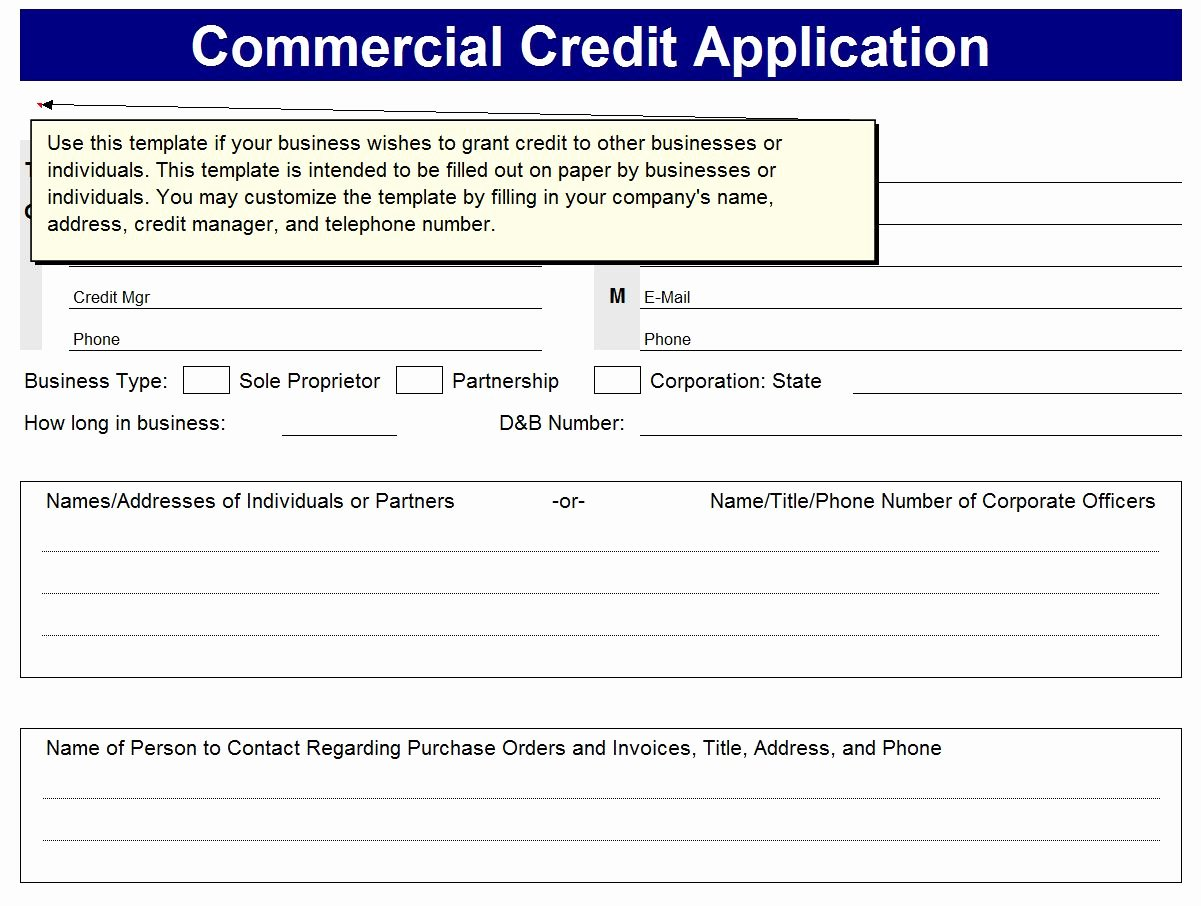 Credit Application form for Business Awesome Business Excel Templates