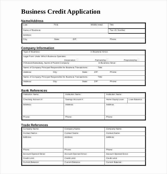 Credit Application form for Business Fresh Credit Application Template 33 Examples In Pdf Word