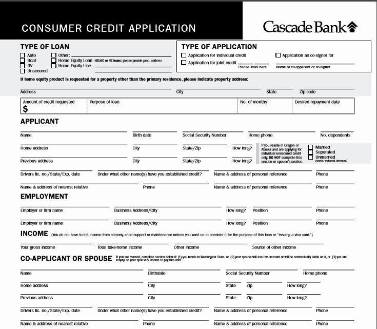 Credit Application Template Lovely 5 Professional Business Credit Application Template Word